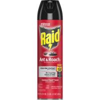 Raid Ant/Roach Killer Spray (669798CT)