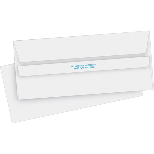 Business Source 04644 Invoice Envelope