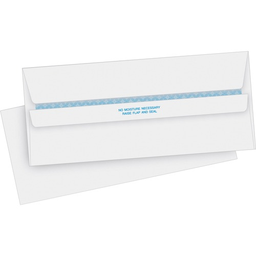 Business Source 04645 Security Invoice Envelope