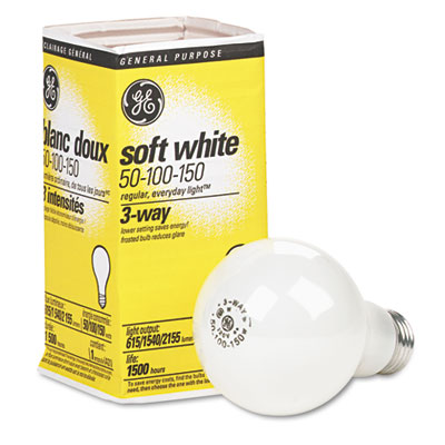 GE 97494 Incandescent Globe Light Bulb