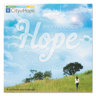 AT-A-GLANCE DDW12528 Day Dream City Of Hope Wall Calendar